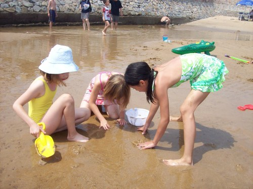 digging for treasures at low tide